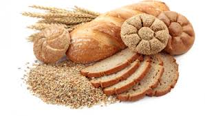 Nutrition Carbohydrates